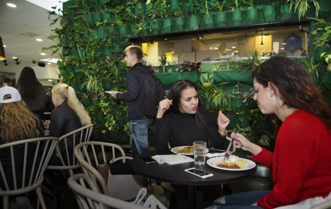 Eleverna Dajana Badawi och Sara Ulusoy diskuterar i den gröna matsalen på Modellskolan Malmö Latin. Foto: Johan Bävman
